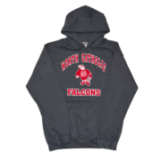 North Catholic Falcons Charcoal Hooded sweatshirt