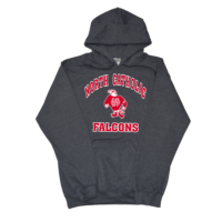 Northeast Catholic Falcons Charcoal Hooded sweatshirt