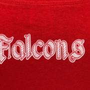 North Catholic Falcons