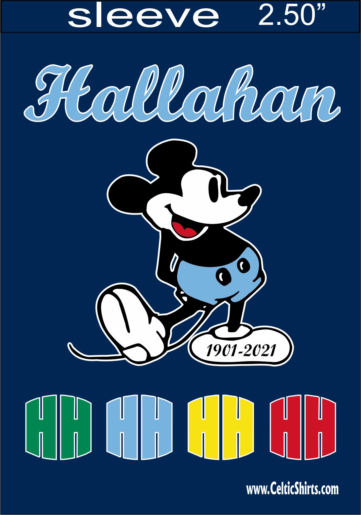 HALLAHAN 28 X 40 FLAG